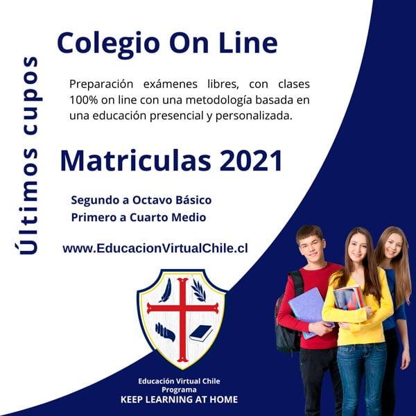 Colegio online educación virtual Chile