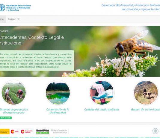 Exitosa convocatoria del segundo diplomado sobre biodiversidad y producción sostenible para funcionarios públicos